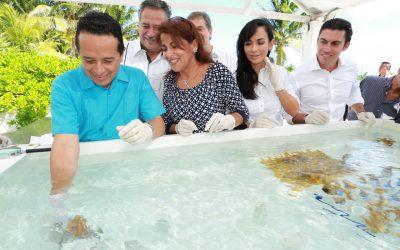 ((FOTOS)) Carlos Joaquín asiste al Arranque del Programa de Restauración de Arrecifes y Firma del Convenio de Colaboración con Inapesca y Conanp en Puerto Morelos.