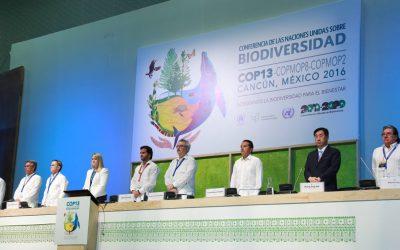 Juntos, coordinados Gobiernos y ciudadanos lograremos un desarrollo sustentable: Carlos Joaquín