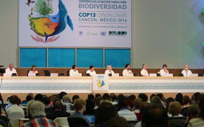 ((FOTOS)) El Gobernador Carlos Joaquín y el Presidente de la República Mexicana, Enrique Peña Nieto en  la Inauguración de la 13ª Conferencia de las Partes del Convenio sobre Diversidad Biológica de Naciones Unidas, COP13