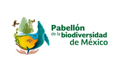 ((VIDEO)) Pabellón Travesía Digital Biodiversidad.