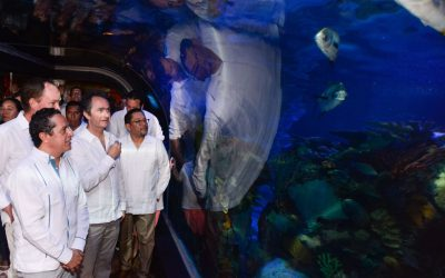 ((VIDEO)) Mensaje del Gobernador Carlos Joaquín inaugurando  L' Acuarium Playa del Carmen de Plaza Cristal.