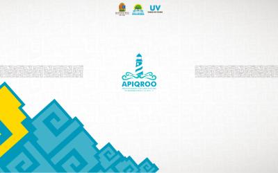 Convocatoria APIQROO: Adquisición de útiles de impresión y tarjetas electrónicas de despensa.