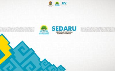 Preparan personal de Sedaru para informar y orientar a ganaderos sobre Fondo de Aseguramiento