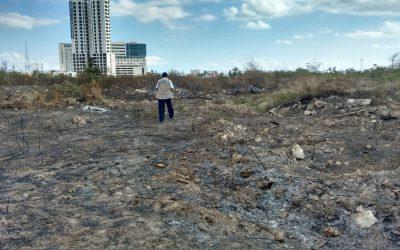La Procuraría de Protección al Ambiente constató daños causados en Malecón Tajamar