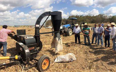 Con la entrega de 30 mil pacas de puntas de caña y melaza se brinda más y mejores oportunidades de producción a los ganaderos de la entidad