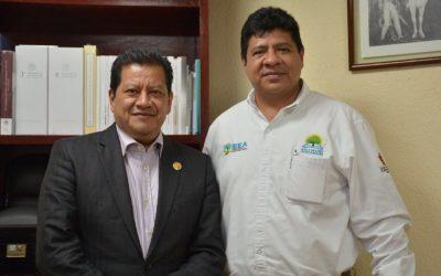 Para favorecer a Quintana Roo con libros para el proceso de enseñanza-aprendizaje