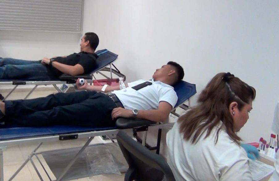 Acciones a fondo para promover la donación de sangre de manera voluntaria y altruista