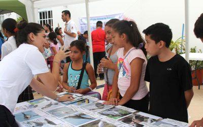 La FPMC concluye los trabajos del primer Festival de la Tortuga Marina