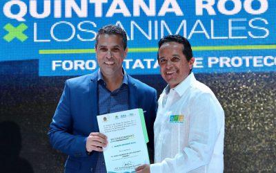 ((FOTOS)) La diversidad animal de Quintana Roo es una riqueza y un orgullo que cuidamos para que sean perdurables