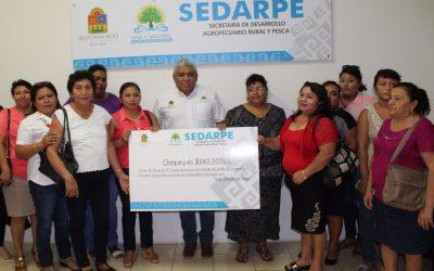 Para mejorar la economía de la zona sur, mujeres emprendedoras del medio rural reciben microcréditos por un total de 345 mil pesos