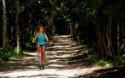 Los destinos del sur reportan un incremento de 7.3% en afluencia de visitantes durante temporada de verano