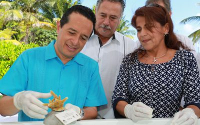 Con la restauración de 260 mil colonias de coral y recuperar dos millones de hectáreas de selvas degradadas, protegemos nuestros recursos: Carlos Joaquín