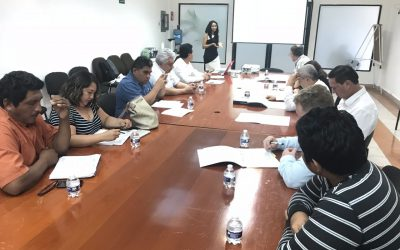 Se crea el Centro de Innovación para el Desarrollo Apícola Sustentable en Quintana Roo para generar más y mejores oportunidades para los productores apícolas