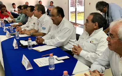 Quintana Roo fortalece la producción legal y sustentable de Caoba