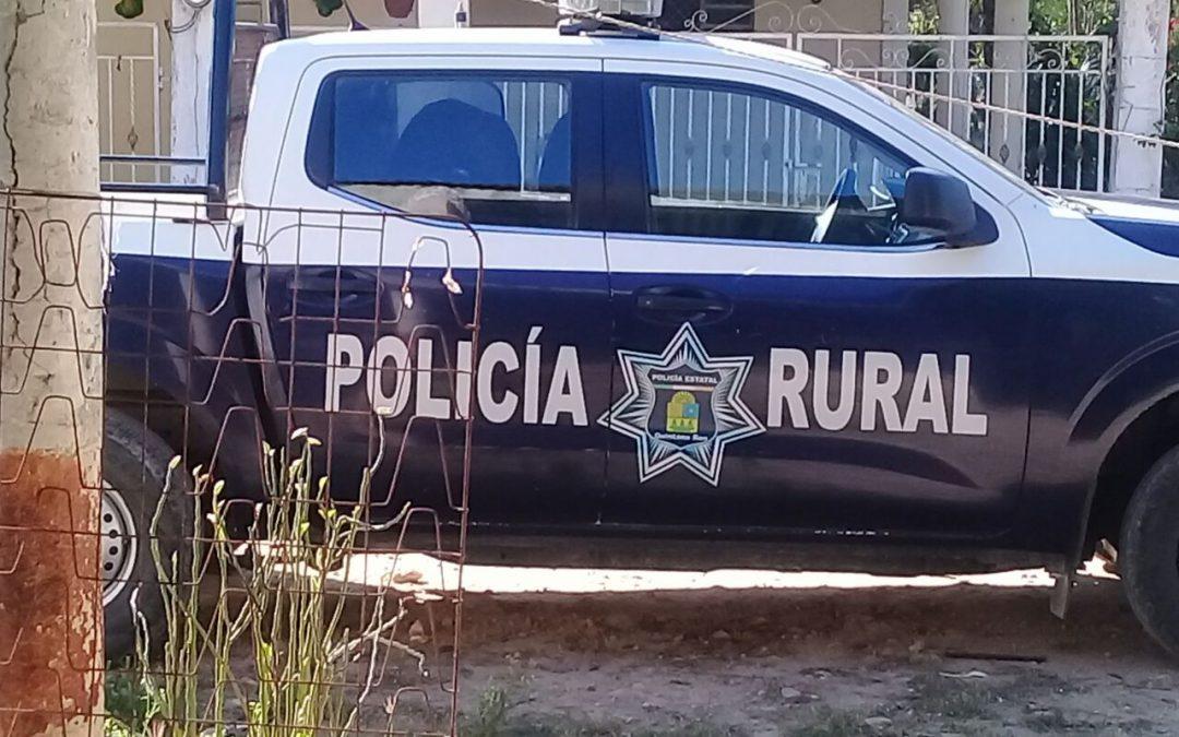 Rescata Policía Estatal a familia atacada por abejas