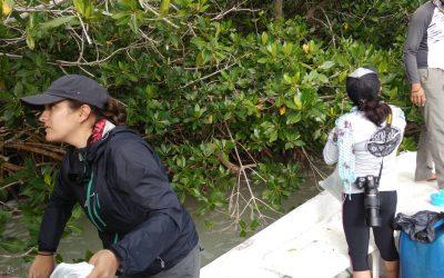 Recorridos de vigilancia en la zona sur de Quintana Roo